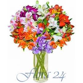 Борисполь доставка цветов где купить розы рассаду в ейске